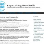 Ragasztonagyker.hu - ragaszto-tartalom-e1491175649418-150x150